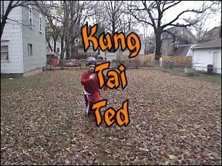 Brad Jones: KUNG TAI TED: Undefeatable