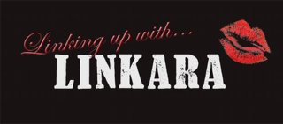 Doug Walker: Linking up with Linkara