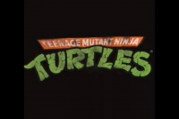 Confused Matthew: Random Rant: Michael Bay & The Ninja Turtles