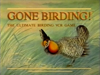 The Spoony Experiment: Black Hole of Board Games - Gone Birding!