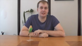 MikeJ: 12 Days of Infomercialism: Perfect Polly Pet