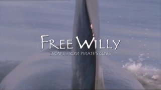 MikeJ: Free Willy 4: Escape from Pirate's Cove