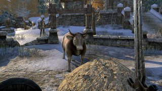 Giant Bomb: Quick Look: The Elder Scrolls Online - Part 01