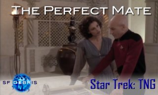 SF Debris: TNG: The Perfect Mate